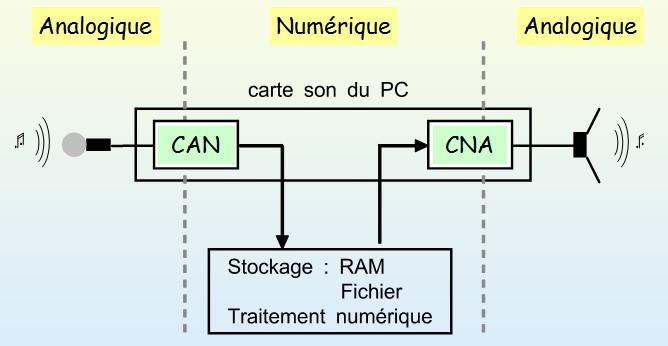 """Résultat de recherche d'images pour """"can-cna"""""""